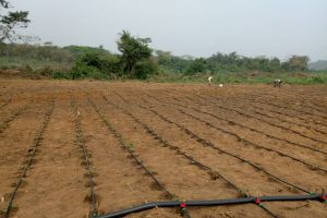 Irrigation ogun