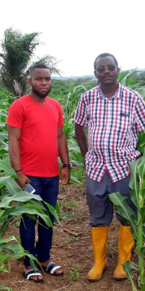 farming Ogun